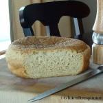 cpy-first-from-scratch-gluten-free-bread-Jan-16-2010-smaller
